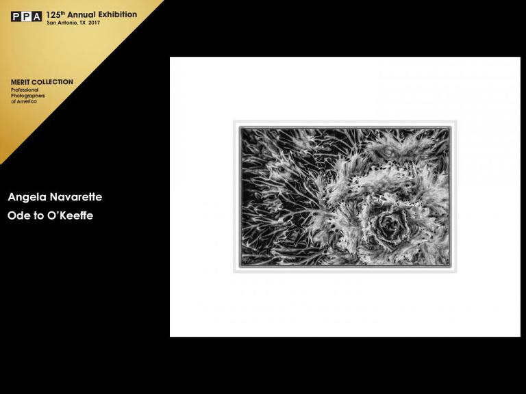 angela navarette, plano tx photographer awards