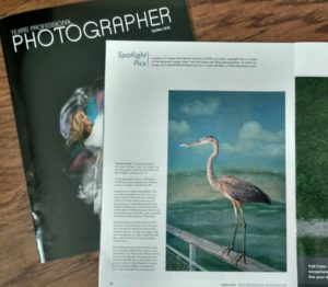 Plano Photographer Angela P. Navarette published in Texas Professional Photographer Magazine